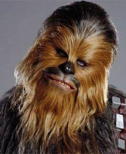 star-wars-episode-7-peter-mayhew-chewbacca